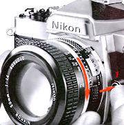 Rlease Lens.jpg(7k)