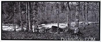 范戴克·布朗 Van Dyke:一种在金金属上永久印制的方法