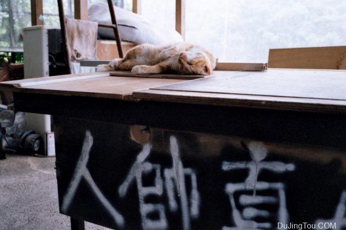 台北写真日2