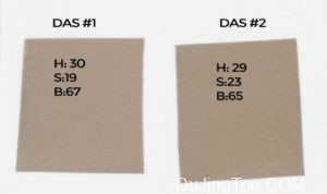 Calvin:碳转移印相 之DAS比较测试