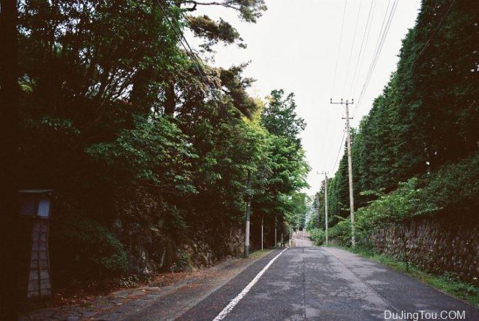 Nicole:来自日本东京的各种类型胶卷的样片。