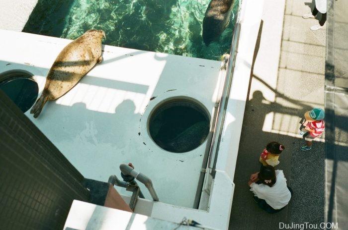 在新加坡冲洗电影胶卷-Leica M6拍摄样片